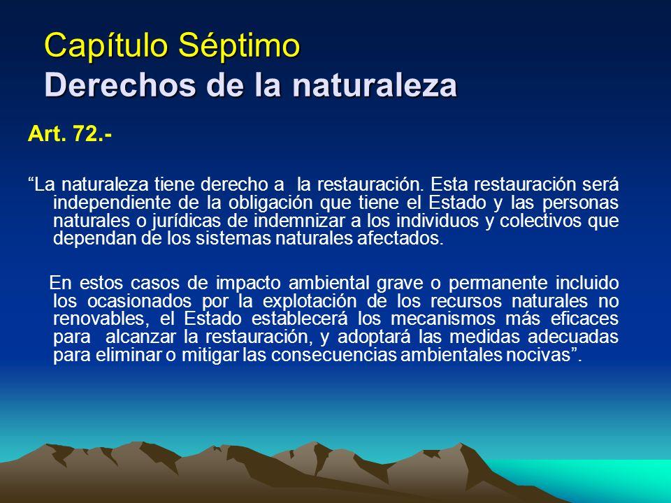 Capítulo Séptimo Derechos de la naturaleza Art. 72.- La naturaleza tiene derecho a la restauración. Esta restauración será independiente de la obligac