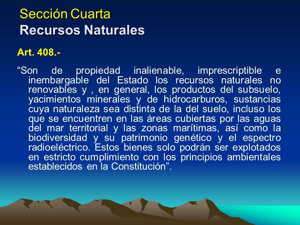 Sección Cuarta Recursos Naturales Art. 408.- Son de propiedad inalienable, imprescriptible e inembargable del Estado los recursos naturales no renovab