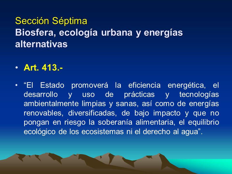 Sección Séptima Biosfera, ecología urbana y energías alternativas Art. 413.- El Estado promoverá la eficiencia energética, el desarrollo y uso de prác