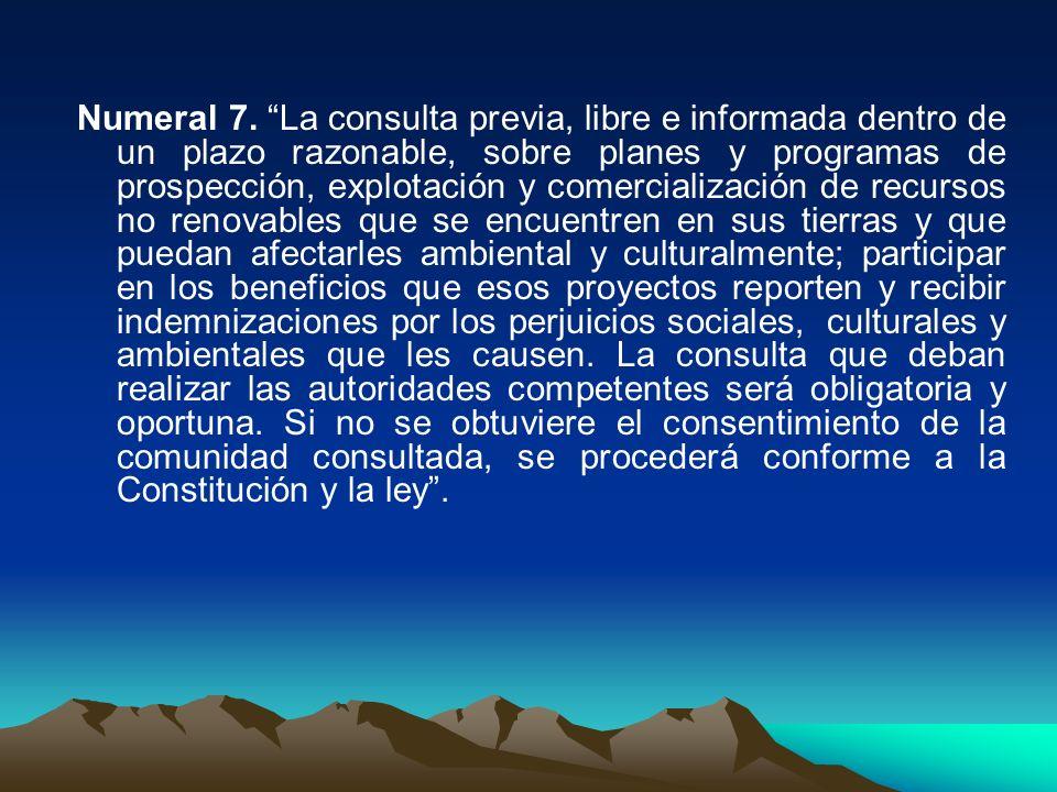 Numeral 7. La consulta previa, libre e informada dentro de un plazo razonable, sobre planes y programas de prospección, explotación y comercialización