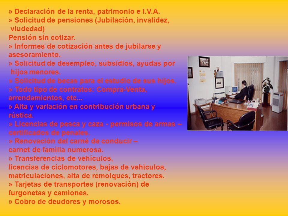 » Declaración de la renta, patrimonio e I.V.A.