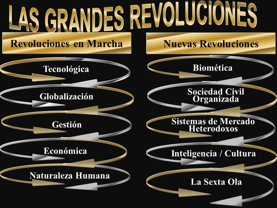 Tecnológica Naturaleza Humana Económica Gestión Globalización Biomética La Sexta Ola Inteligencia / Cultura Sistemas de Mercado Heterodoxos Sociedad C