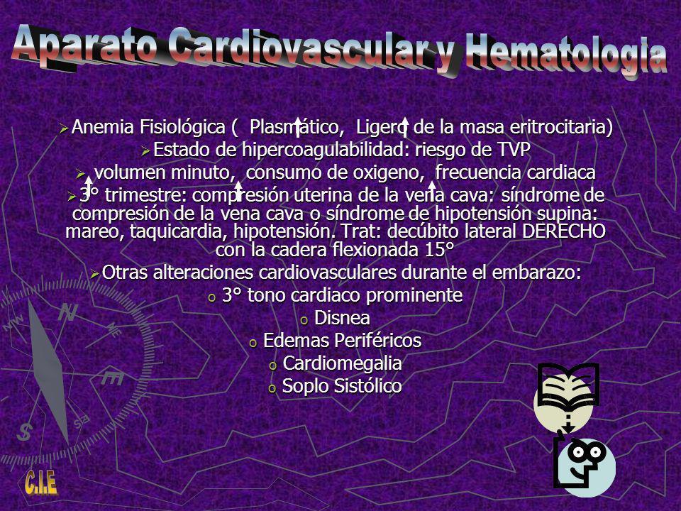 Anemia Fisiológica ( Plasmático, Ligero de la masa eritrocitaria) Anemia Fisiológica ( Plasmático, Ligero de la masa eritrocitaria) Estado de hipercoagulabilidad: riesgo de TVP Estado de hipercoagulabilidad: riesgo de TVP volumen minuto, consumo de oxigeno, frecuencia cardiaca volumen minuto, consumo de oxigeno, frecuencia cardiaca 3° trimestre: compresión uterina de la vena cava: síndrome de compresión de la vena cava o síndrome de hipotensión supina: mareo, taquicardia, hipotensión.