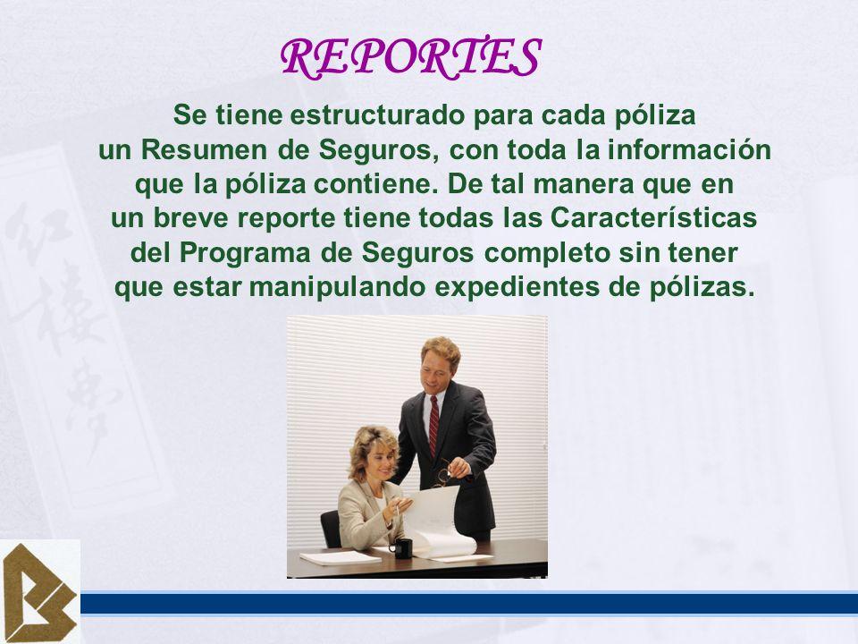 REPORTES Se tiene estructurado para cada póliza un Resumen de Seguros, con toda la información que la póliza contiene. De tal manera que en un breve r