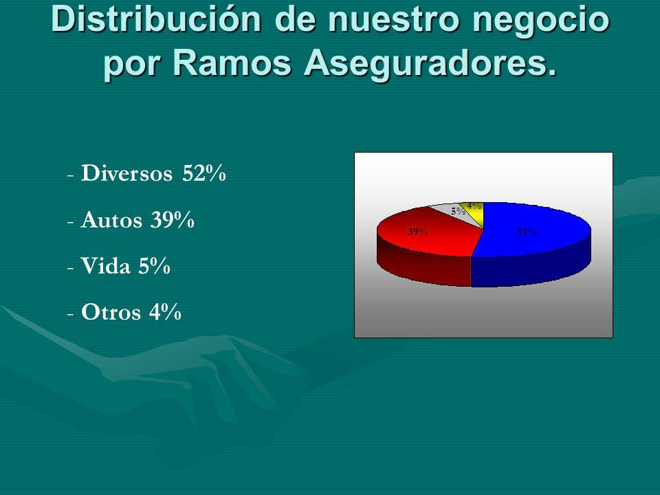 Distribución de nuestro negocio por Ramos Aseguradores.
