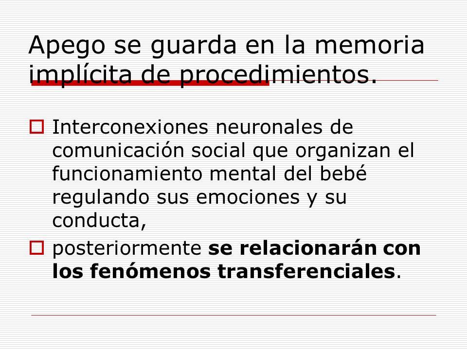 Apego se guarda en la memoria implícita de procedimientos. Interconexiones neuronales de comunicación social que organizan el funcionamiento mental de