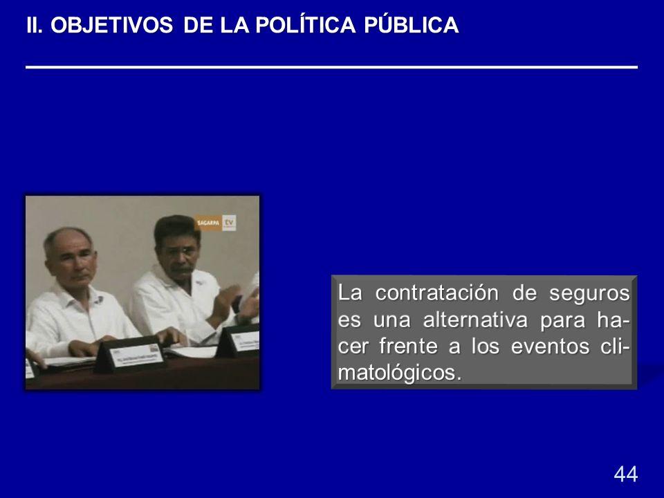 44 II. OBJETIVOS DE LA POLÍTICA PÚBLICA