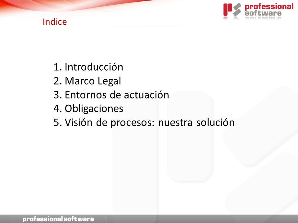 Indice 1.Introducción 2.Marco Legal 3.Entornos de actuación 4.Obligaciones 5.Visión de procesos: nuestra solución