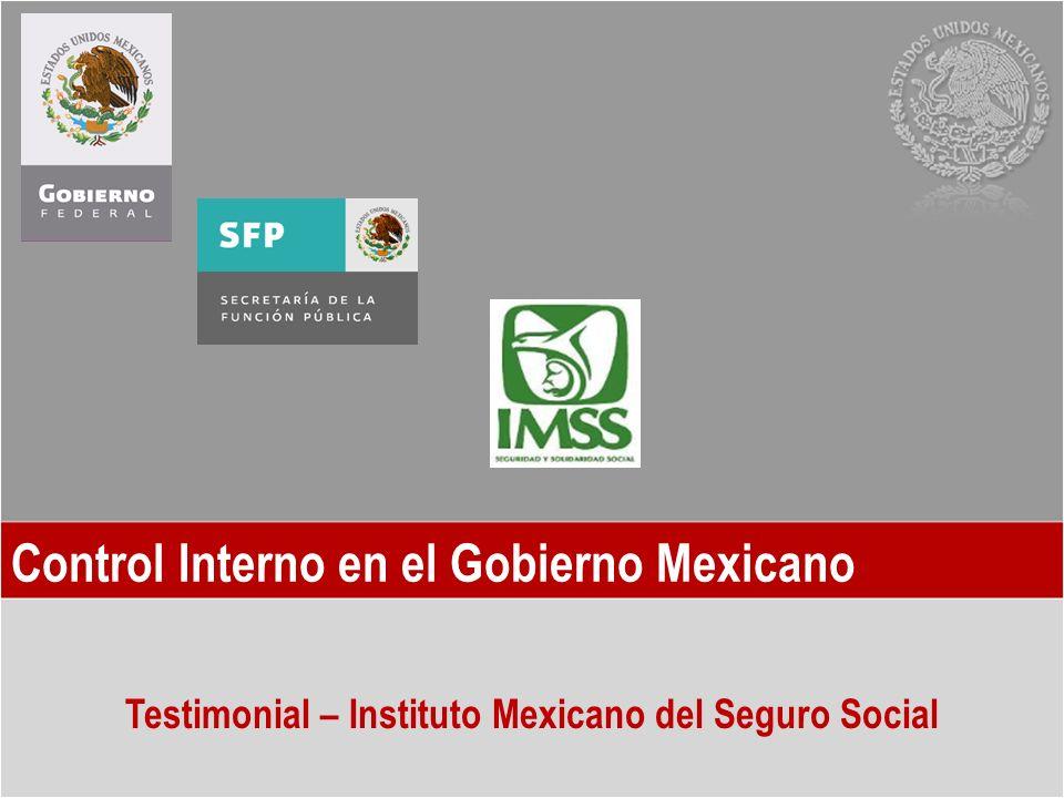 Control Interno en el Gobierno Mexicano Testimonial – Instituto Mexicano del Seguro Social