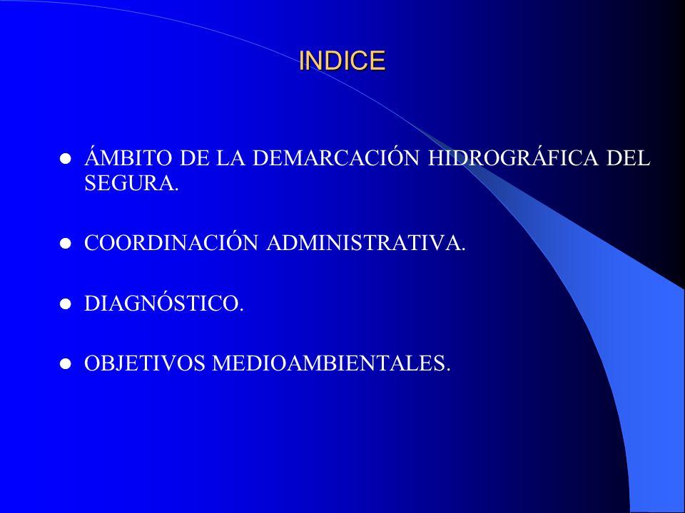 INDICE ÁMBITO DE LA DEMARCACIÓN HIDROGRÁFICA DEL SEGURA. COORDINACIÓN ADMINISTRATIVA. DIAGNÓSTICO. OBJETIVOS MEDIOAMBIENTALES.