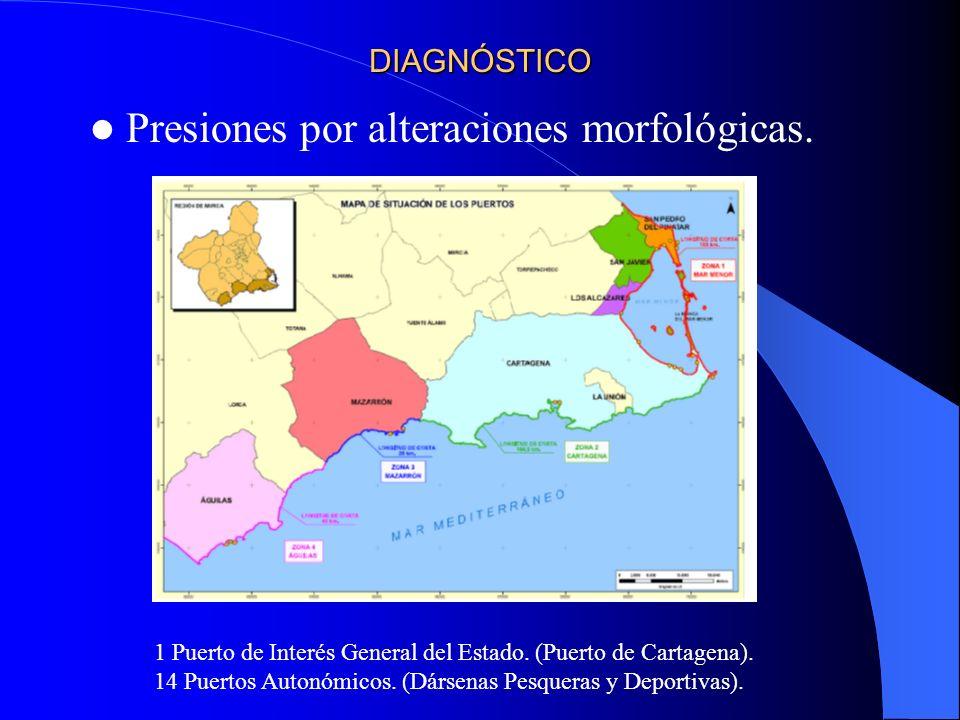 DIAGNÓSTICO Presiones por alteraciones morfológicas. 1 Puerto de Interés General del Estado. (Puerto de Cartagena). 14 Puertos Autonómicos. (Dársenas