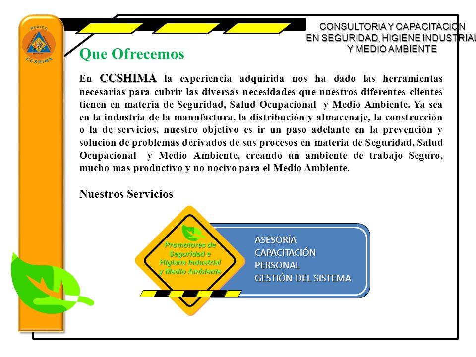 CONSULTORIA Y CAPACITACION EN SEGURIDAD, HIGIENE INDUSTRIAL Y MEDIO AMBIENTE ASESORÍA 1.DIAGNOSTICO 2.ESTADO GENERAL DE LAS ACTIVIDADES 3.PLAN DE ACCIÓN 4.DISPOSITIVOS DE CONTROL 5.