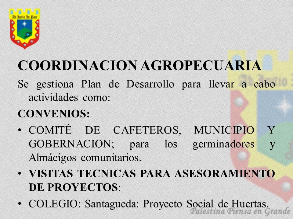 COORDINACION AGROPECUARIA Se gestiona Plan de Desarrollo para llevar a cabo actividades como: CONVENIOS: COMITÉ DE CAFETEROS, MUNICIPIO Y GOBERNACION;