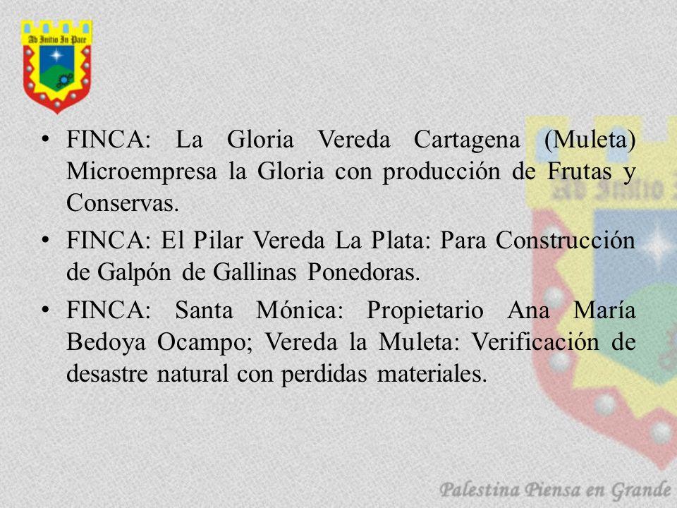 FINCA: La Gloria Vereda Cartagena (Muleta) Microempresa la Gloria con producción de Frutas y Conservas. FINCA: El Pilar Vereda La Plata: Para Construc