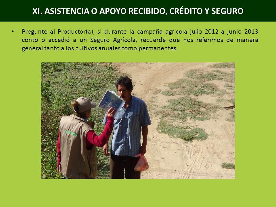 XI. ASISTENCIA O APOYO RECIBIDO, CRÉDITO Y SEGURO Pregunte al Productor(a), si durante la campaña agrícola julio 2012 a junio 2013 conto o accedió a u