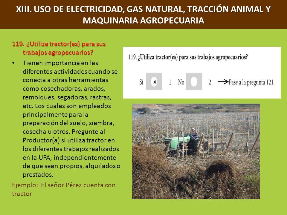 XIII. USO DE ELECTRICIDAD, GAS NATURAL, TRACCIÓN ANIMAL Y MAQUINARIA AGROPECUARIA 119. ¿Utiliza tractor(es) para sus trabajos agropecuarios? Tienen im
