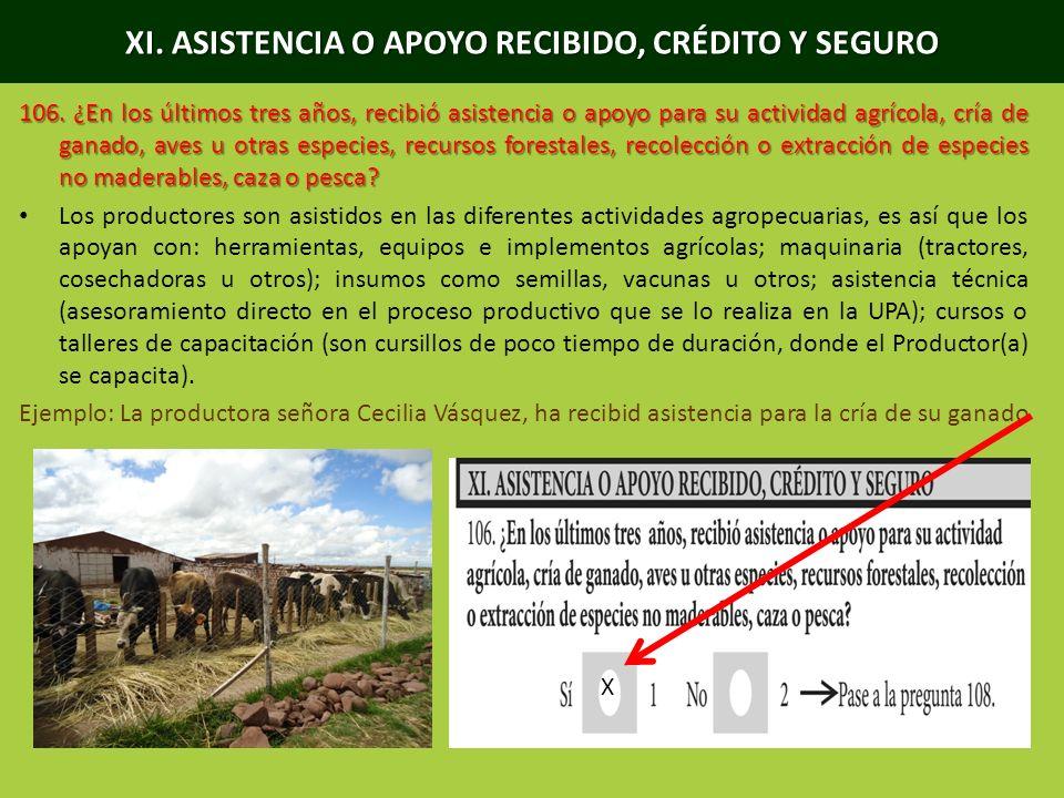 XI. ASISTENCIA O APOYO RECIBIDO, CRÉDITO Y SEGURO 106. ¿En los últimos tres años, recibió asistencia o apoyo para su actividad agrícola, cría de ganad