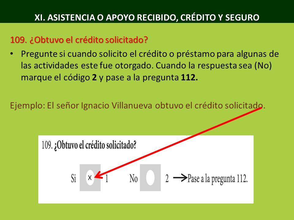 XI.ASISTENCIA O APOYO RECIBIDO, CRÉDITO Y SEGURO 110.