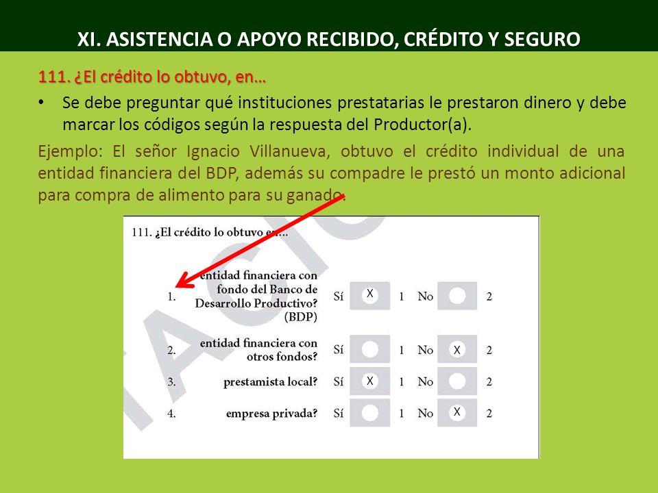 XI. ASISTENCIA O APOYO RECIBIDO, CRÉDITO Y SEGURO 111. ¿El crédito lo obtuvo, en… Se debe preguntar qué instituciones prestatarias le prestaron dinero