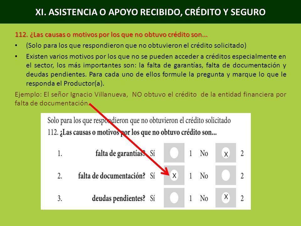 XI.ASISTENCIA O APOYO RECIBIDO, CRÉDITO Y SEGURO 113.