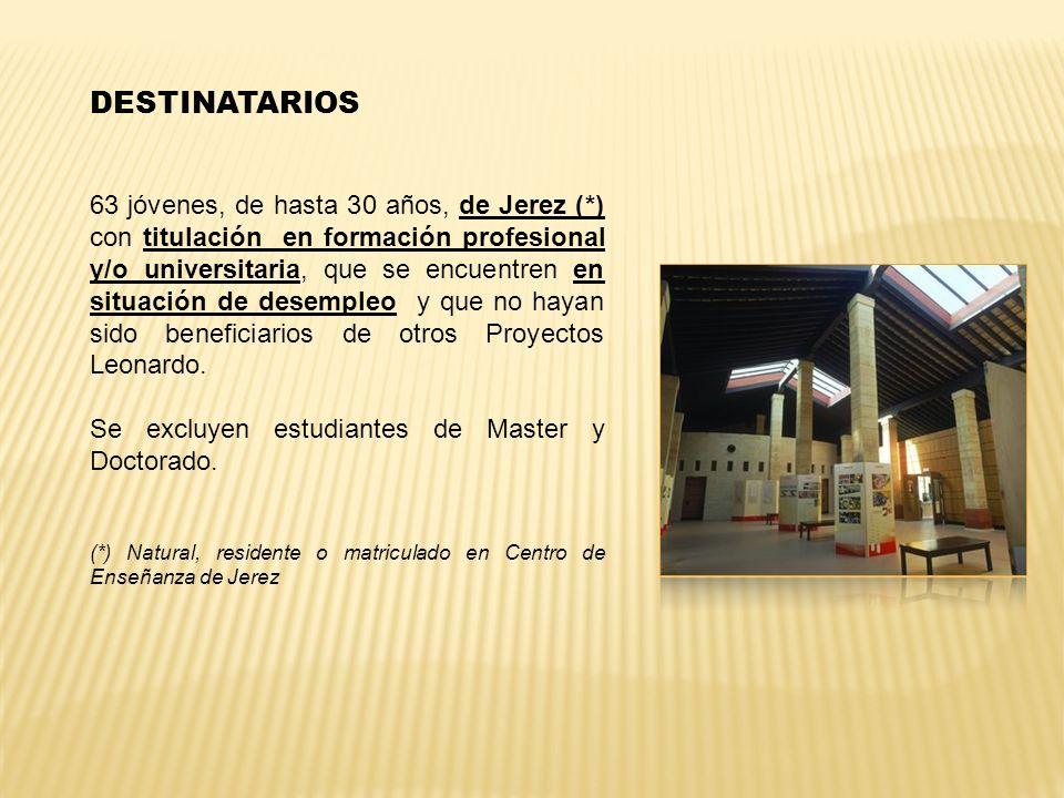 DESTINATARIOS 63 jóvenes, de hasta 30 años, de Jerez (*) con titulación en formación profesional y/o universitaria, que se encuentren en situación de
