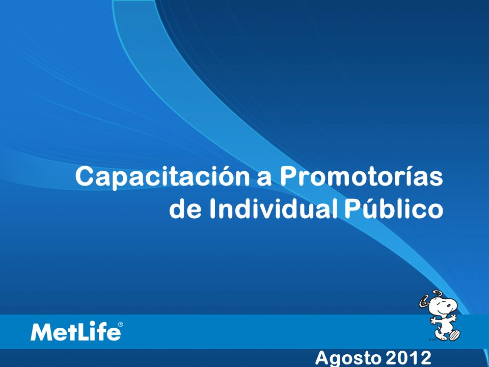 Capacitación a Promotorías de Individual Público Agosto 2012