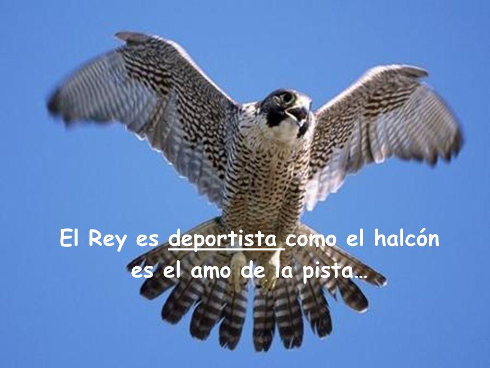 El Rey es deportista como el halcón es el amo de la pista…