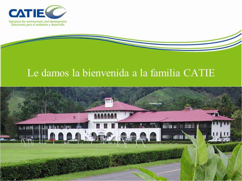Escuela y colegio CATIE cuenta con una institución multicultural de enseñanza bilingüe, de carácter privado y sin fines de lucro, que funciona desde 1963 en el campus del CATIE y está afiliada a la Asociación de Centros Educativos Privados.