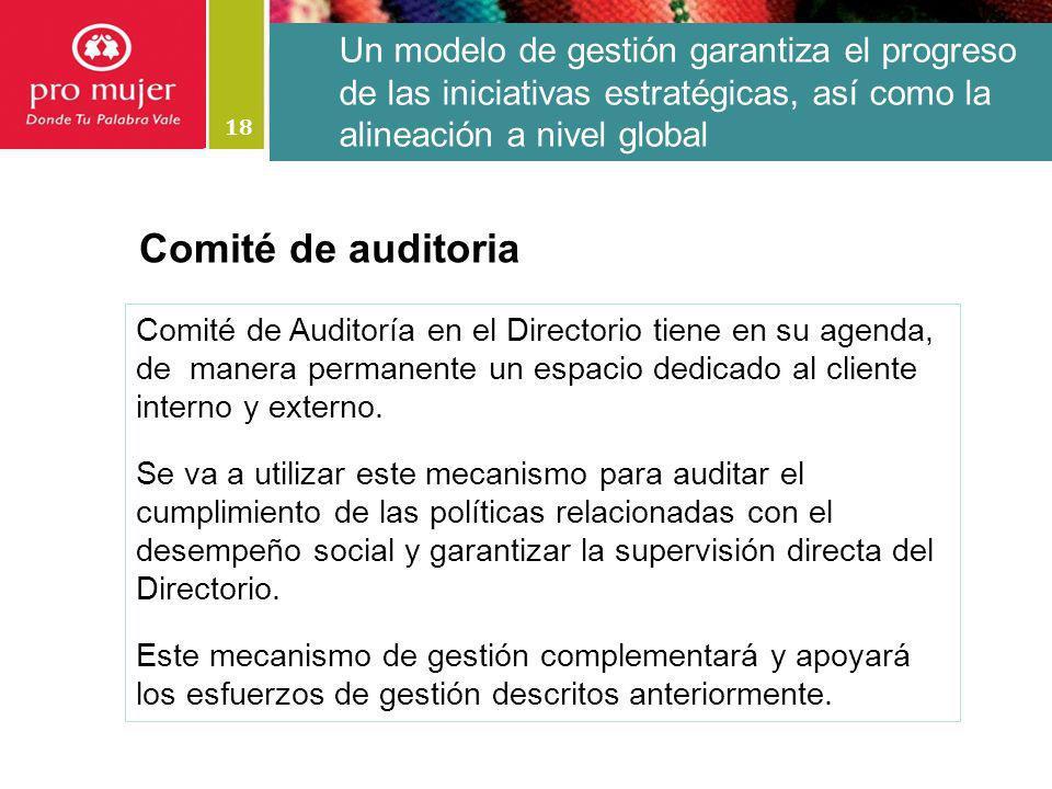 18 Un modelo de gestión garantiza el progreso de las iniciativas estratégicas, así como la alineación a nivel global Comité de Auditoría en el Directo