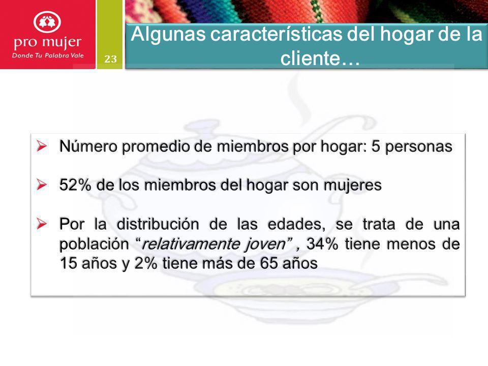23 Algunas características del hogar de la cliente… Número promedio de miembros por hogar: 5 personas Número promedio de miembros por hogar: 5 persona
