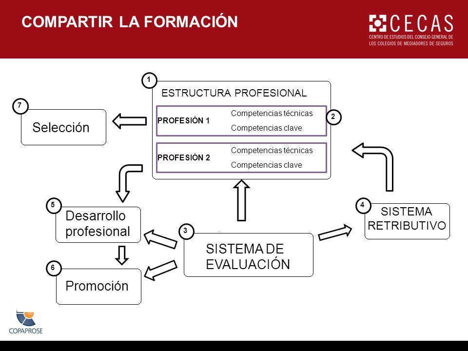 COMPARTIR LA FORMACIÓN ESTRUCTURA PROFESIONAL PROFESIÓN 1 PROFESIÓN 2 Competencias técnicas Competencias clave Selección Desarrollo profesional Promoción SISTEMA DE EVALUACIÓN SISTEMA RETRIBUTIVO 1 7 5 3 6 4 2