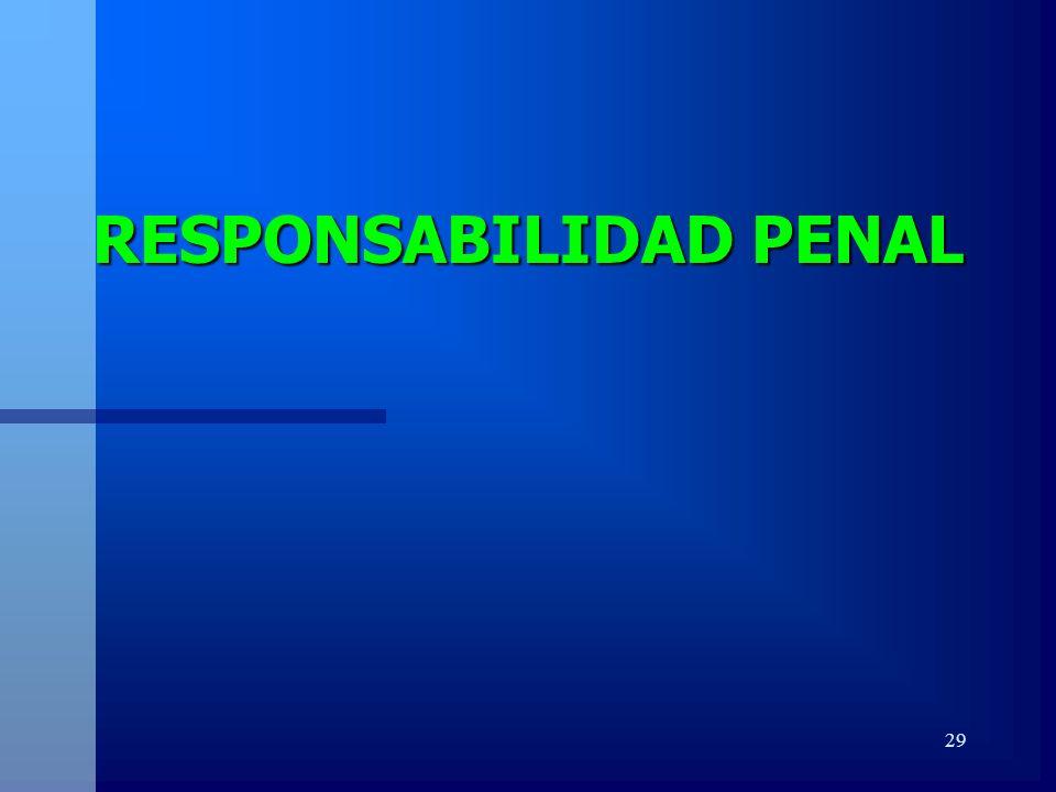 29 RESPONSABILIDAD PENAL
