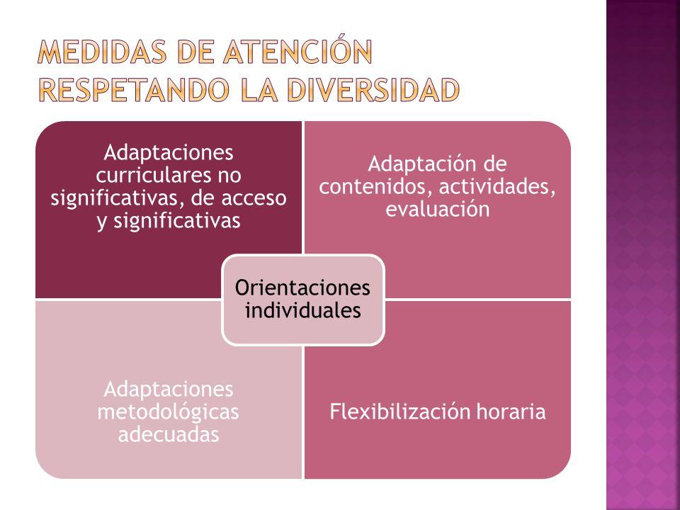 Adaptaciones curriculares no significativas, de acceso y significativas Adaptación de contenidos, actividades, evaluación Adaptaciones metodológicas adecuadas Flexibilización horaria Orientaciones individuales