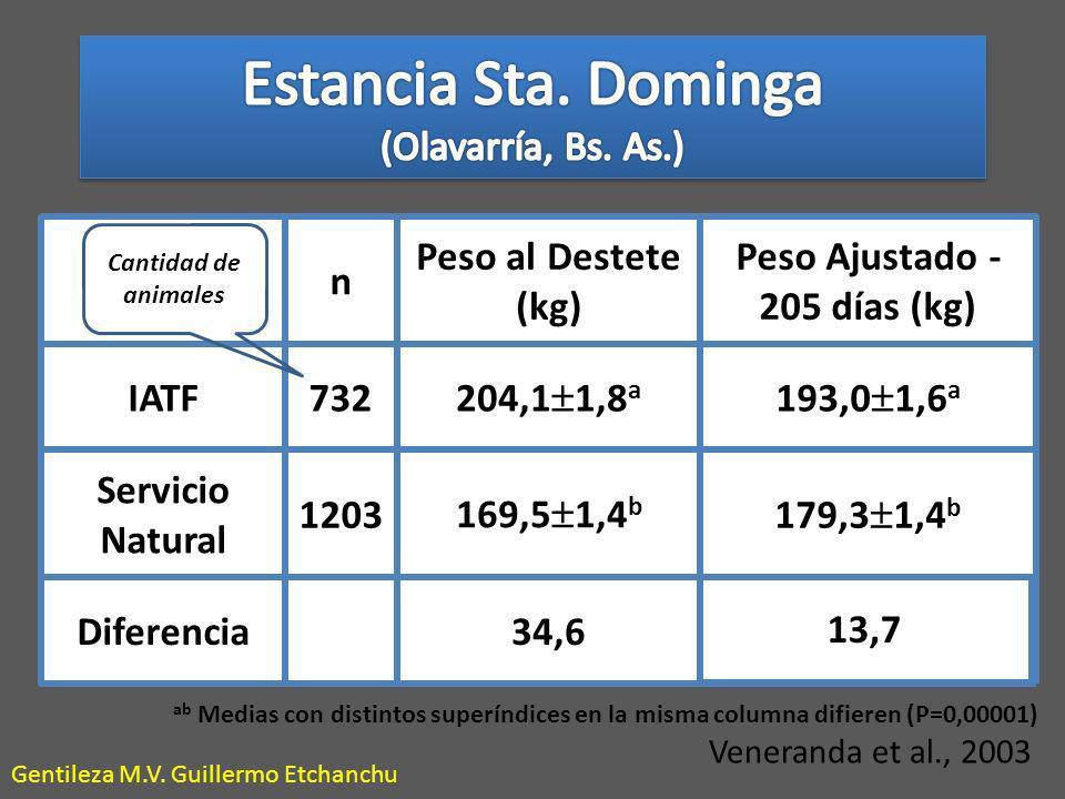 13,7 n Peso al Destete (kg) Peso Ajustado - 205 días (kg) IATF732 204,1 1,8 a 193,0 1,6 a Servicio Natural 1203 169,5 1,4 b 179,3 1,4 b Diferencia34,6 Veneranda et al., 2003 ab Medias con distintos superíndices en la misma columna difieren (P=0,00001) Cantidad de animales Gentileza M.V.