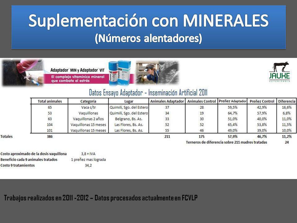 Trabajos realizados en 2011 -2012 – Datos procesados actualmente en FCVLP