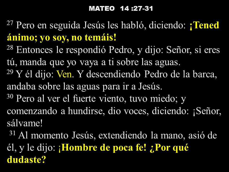 MATEO 14 :27-31 27 Pero en seguida Jesús les habló, diciendo: ¡Tened ánimo; yo soy, no temáis! 28 Entonces le respondió Pedro, y dijo: Señor, si eres