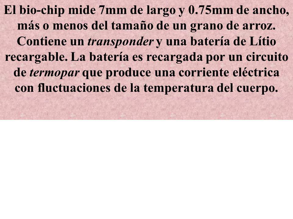 El bio-chip mide 7mm de largo y 0.75mm de ancho, más o menos del tamaño de un grano de arroz.