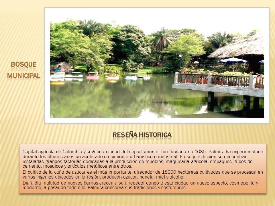 Capital agrícola de Colombia y segunda ciudad del departamento, fue fundada en 1680. Palmira ha experimentado durante los últimos años un acelerado cr