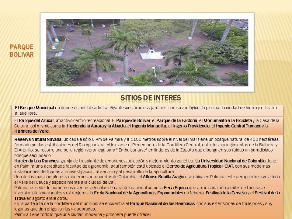 El Bosque Municipal en donde es posible admirar gigantescos árboles y jardines, con su zoológico, la piscina, la ciudad de hierro y el teatro al aire