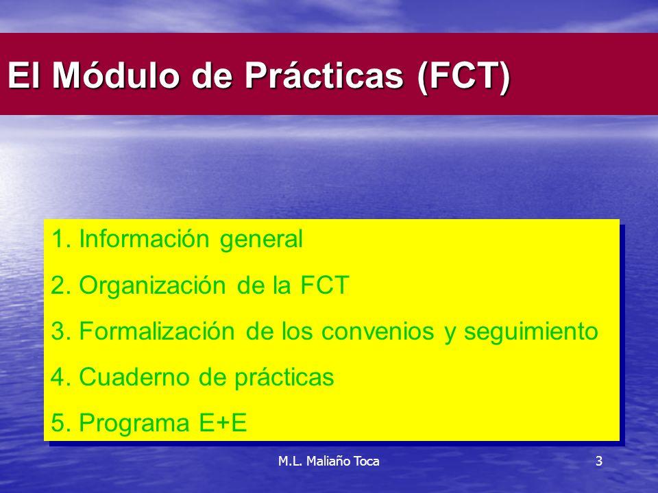 3 1.Información general 2. Organización de la FCT 3.