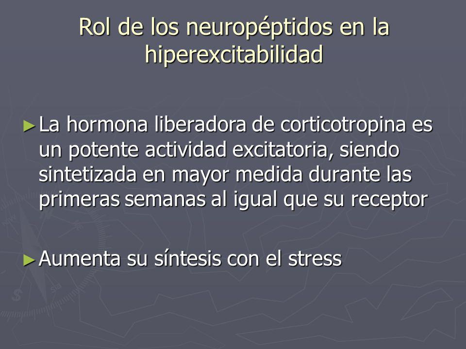 Rol de los neuropéptidos en la hiperexcitabilidad La hormona liberadora de corticotropina es un potente actividad excitatoria, siendo sintetizada en m