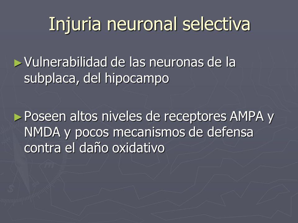 Injuria neuronal selectiva Vulnerabilidad de las neuronas de la subplaca, del hipocampo Vulnerabilidad de las neuronas de la subplaca, del hipocampo P