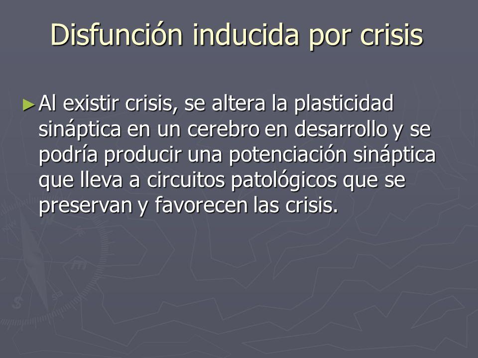 Disfunción inducida por crisis Al existir crisis, se altera la plasticidad sináptica en un cerebro en desarrollo y se podría producir una potenciación
