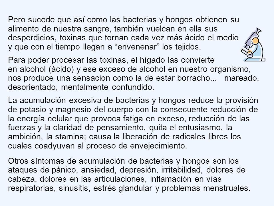 Las bacterias y hongos se alimentan de las mismas sustancias de las que se alimenta nuestro cerebro. Cuando ingerimos en exceso, alimentos ricos en gl