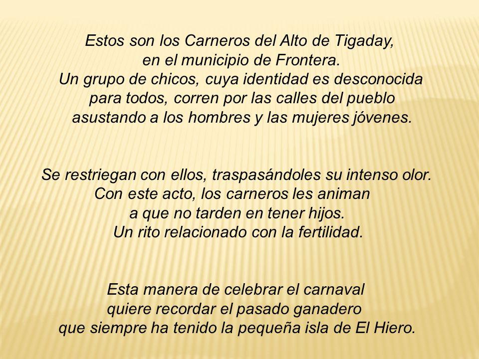 Estos son los Carneros del Alto de Tigaday, en el municipio de Frontera. Un grupo de chicos, cuya identidad es desconocida para todos, corren por las