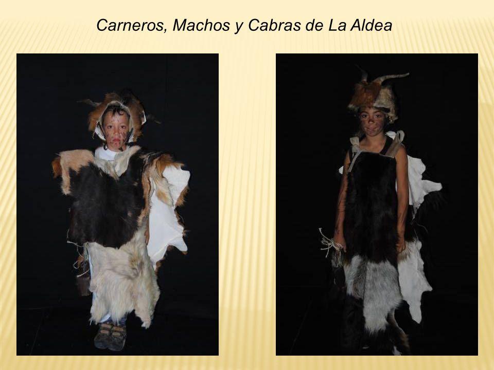 Carneros, Machos y Cabras de La Aldea