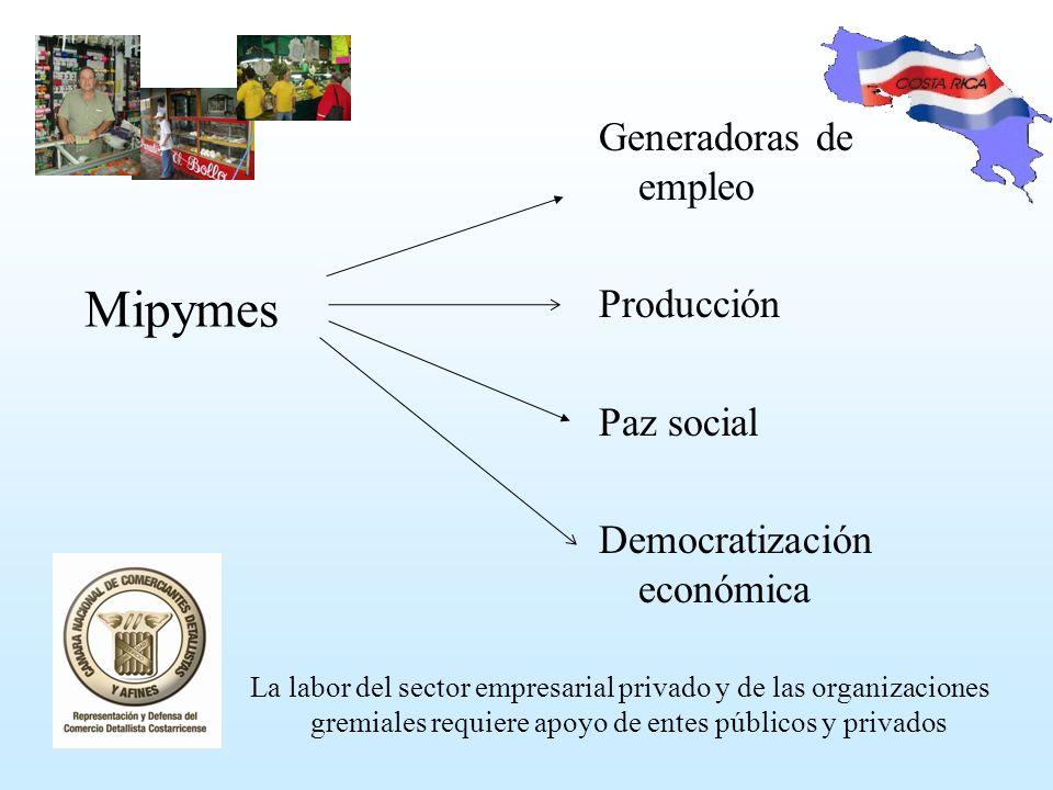 Mipymes La labor del sector empresarial privado y de las organizaciones gremiales requiere apoyo de entes públicos y privados Generadoras de empleo Producción Paz social Democratización económica