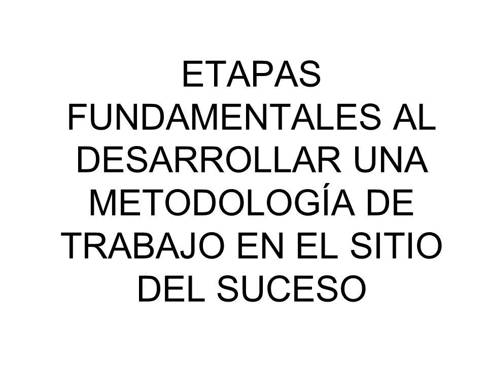 ETAPAS FUNDAMENTALES AL DESARROLLAR UNA METODOLOGÍA DE TRABAJO EN EL SITIO DEL SUCESO