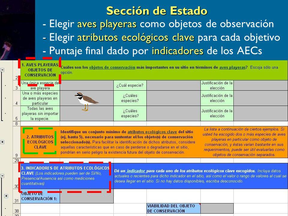 Sección de Estado aves playeras - Elegir aves playeras como objetos de observación - atributos ecológicos clave - Elegir atributos ecológicos clave para cada objetivo indicadores - Puntaje final dado por indicadores de los AECs