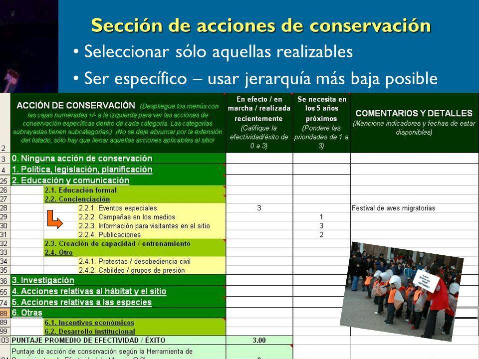 Seleccionar sólo aquellas realizables Ser específico – usar jerarquía más baja posible Sección de acciones de conservación